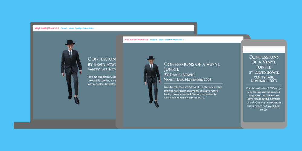 Screenshot of the Vinyl Junkie | David Bowie's Favourite Albums website, a personal project by Rhineland Co., Hamilton web design studio
